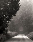 Photograph by Nicholas Bell, Light on an Unfamiliar Road, available from Zatista.com