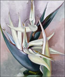 Painting by Georgia O'Keeffe, White Bird of Paradise, 1939, on display at Georgia O'Keeffe Museum in Santa Fe, February 7 - Sept 14, 2014