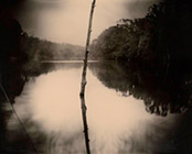 Photographs by Sally Mann on exhibition at The Museum of Fine Arts, Houston, March 3 - May 27, 2019, 022119